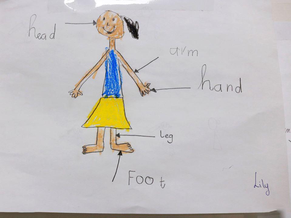 Hoàn thành việc vẽ tranh và ghi chú các từ vựng tiếng Anh trẻ em